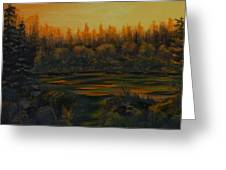 Beaver Pond At Sunset Greeting Card by Rebecca  Fitchett