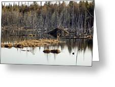 Beaver Residence Greeting Card