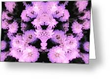 Bed Of Pink Dahlias Greeting Card