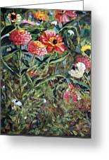 Bed Of Zinnias Greeting Card