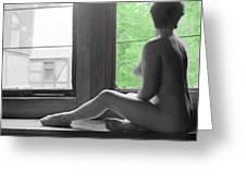 Bedroom Window Greeting Card by Jan W Faul