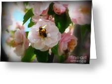 Bee Blossoms Greeting Card