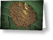 Bee Cluster Greeting Card