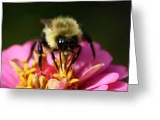 Bee Good Greeting Card