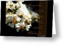 Bee In Crape - Verse Greeting Card