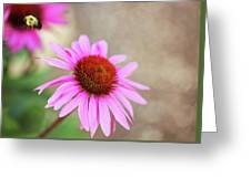 Bee In Motion Greeting Card