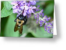 Bee-lieve Greeting Card