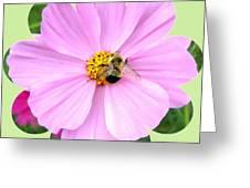 Bee-line 1 Greeting Card