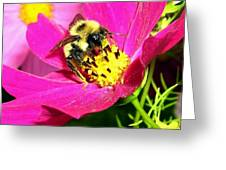 Bee-line 3 Greeting Card