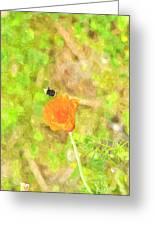 Bee My Flower Greeting Card