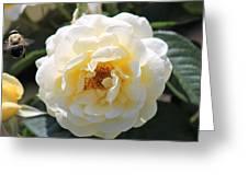 Bee My Rose Greeting Card