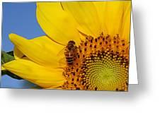 Bee My Sunshine Greeting Card
