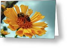 Bee Nice Greeting Card