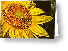 Bee On A Sunflower Greeting Card