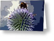 Bee On An Allium Greeting Card