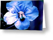 Bee On Blue Flower Greeting Card
