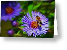 Bee On Lavender Flower Greeting Card