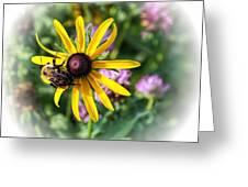 Bee On Yellow Coneflower Greeting Card