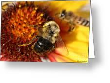 Bee One Greeting Card
