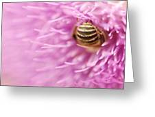 Bee The Moon Greeting Card