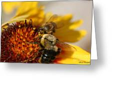 Bee Two Greeting Card