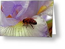 Bee U T Ful Greeting Card