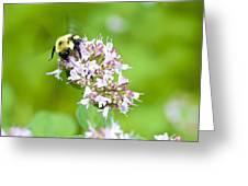 Bee Wings Greeting Card