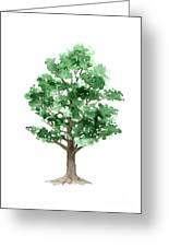 Beech Tree Minimalist Watercolor Painting Greeting Card
