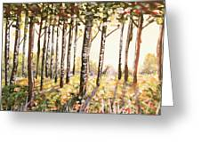 Beech Trees At Dawn Greeting Card
