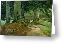 Beech Trees In Frederiksdal Near Copenhagen Greeting Card by Christian Ernst Bernhard Morgenstern
