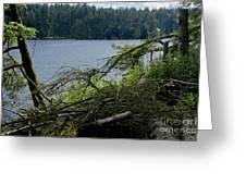 Beecraigs Loch. Greeting Card