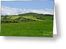 Beecraigs Hills. Greeting Card