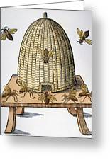 Beehive, 1658 Greeting Card