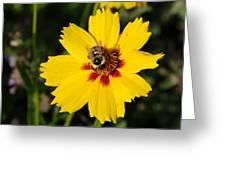 Beelightful Greeting Card