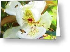 Bees On Open Magnolia Greeting Card