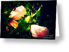 Beetle Hanging Out With Hibiscus Flowers Greeting Card