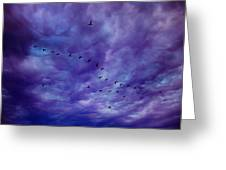 Before It Storms Greeting Card