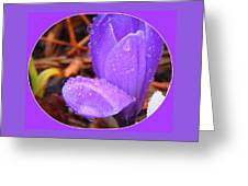 Before The Next Teardrop Falls Greeting Card