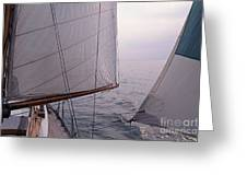 Before The Wind Greeting Card