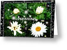 Beginnings  Greeting Card
