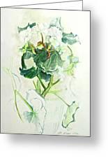 Begonia Ballet Greeting Card