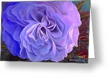 Begonia Bloom Greeting Card