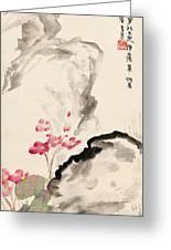 Begonia Flowers Greeting Card