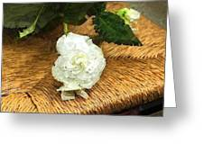 Begonia In Repose Greeting Card