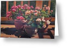 Begonias On Deck Greeting Card