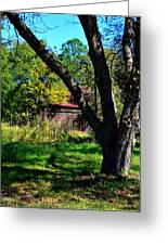 Behind The Old Oak Tree Vertical Greeting Card