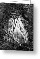 Behind The Tree-bw Greeting Card