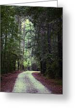 Beidler Forest Greeting Card