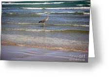 Being One With The Gulf - Alert Greeting Card