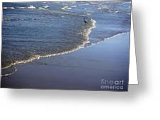 Being One With The Gulf - At Peace Greeting Card